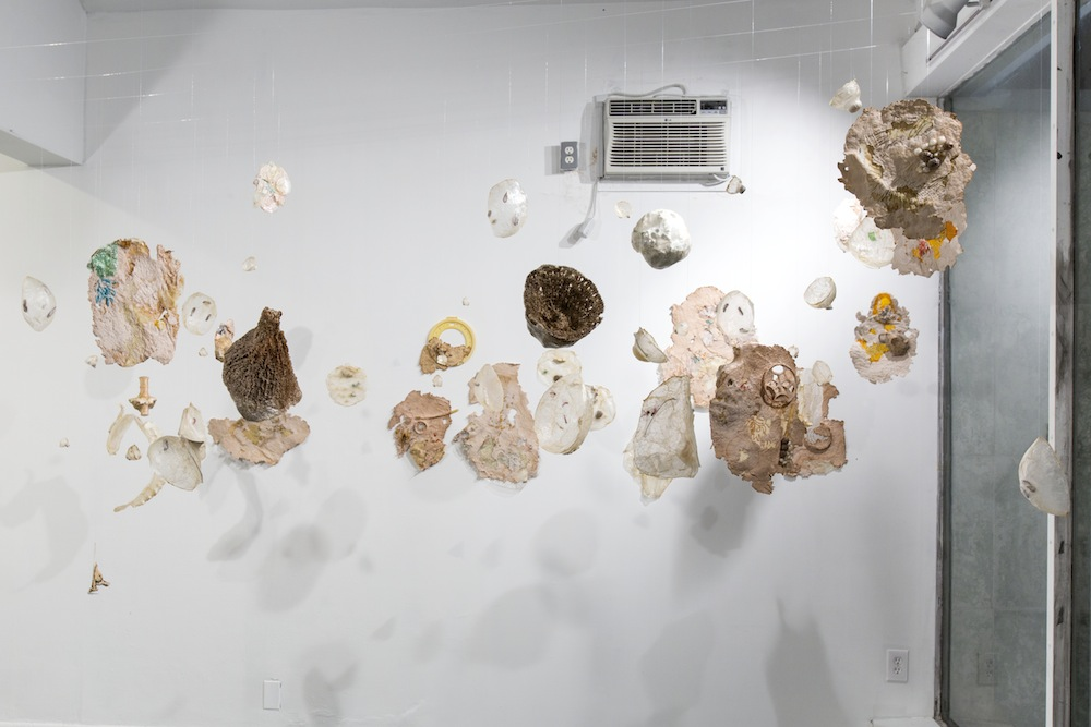 Absorb, Adapt Embroidery on plastic and vellum, handmade paper, pig intestine, bones, beach detritus and other materials Variable dimensions 2015 Photo credit - Silvia Ros