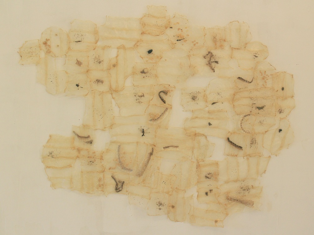 "Pierce, Probe, Preserve Embroidery, pig intestine, insects, snake molts, seeds 4' 9"" x 4' 9"" 2013 Photo credit – Lasha Mowchun"