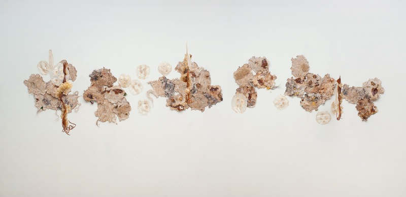Muddy Waters Embroidery, handmade paper, squid, pig intestine, hair and other materials Variable dimensions 2011 Photo credit – William Eakin